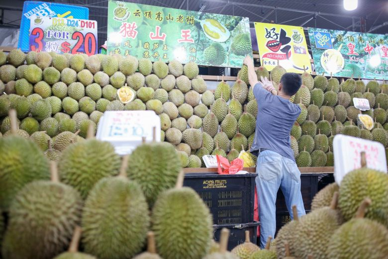 Cheaper and better durians, thanks to Malaysia supply glut