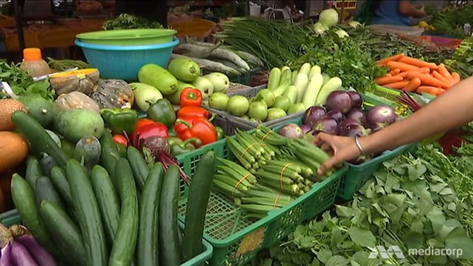 Firm fined for illegally importing more than 2 tonnes of fresh vegetables from Malaysia
